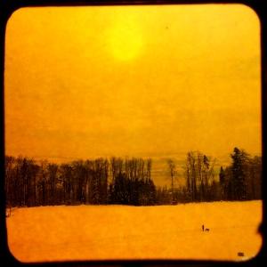 Ein Hund läuft mit seinem Herrchen im Schnee. Gelbe Spuren sind Zeugen davon.